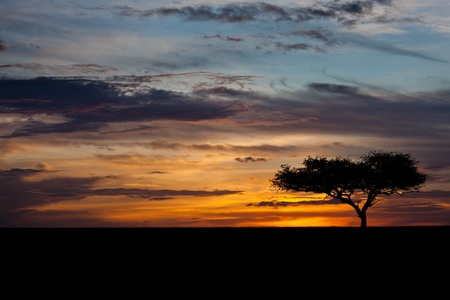 African sunset photo