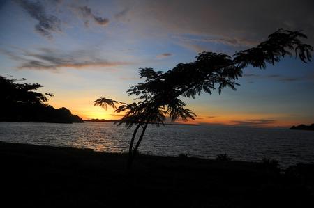 mwanza: landscape of Tanzania