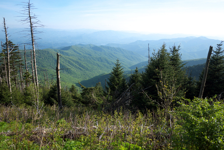 great smoky national park: Smoky Mountains view from Clingmans Dome, in Great Smoky Mountains National Park, Tennessee