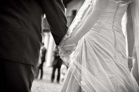 wedding bands: Tomados de la mano