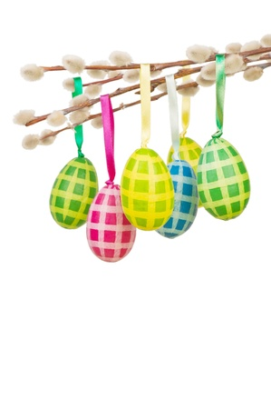 Easter eggs on white background photo
