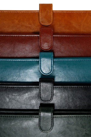 Colorful leather organizers