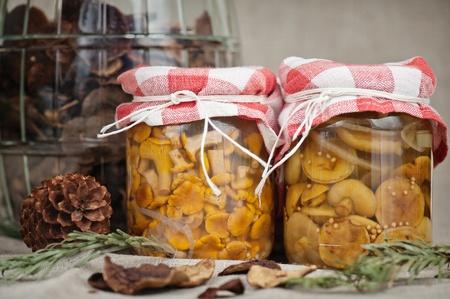 Rókagomba, vargánya gombával pácolt üvegekbe, egy üveg szárított gomba a háttérben Stock fotó
