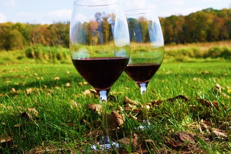 Wine glasses on the countryside