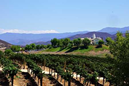 overlook: Vineyard overlook