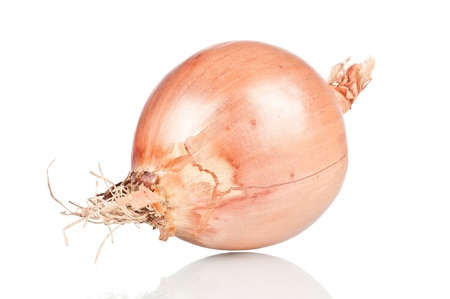 Ripe onion on a white reflective background