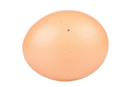 Close up of an egg over a white background Stock Photo - 17670460