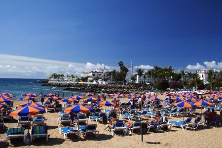 Beach Umbrellas photo