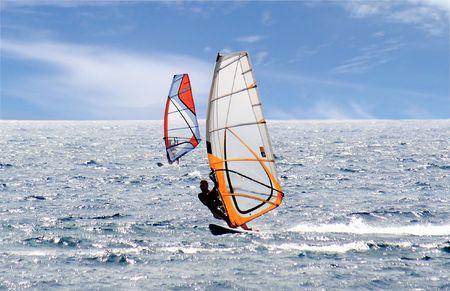 windsurfers: Pair of Windsurfers