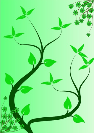 mint leaf: An abstract floral background ilustration with winding vines on a lighter green graduated backdrop