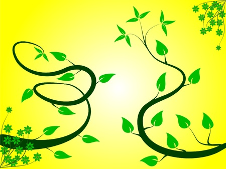 rown: A  floral background with a green floral design on a yellow background  Illustration