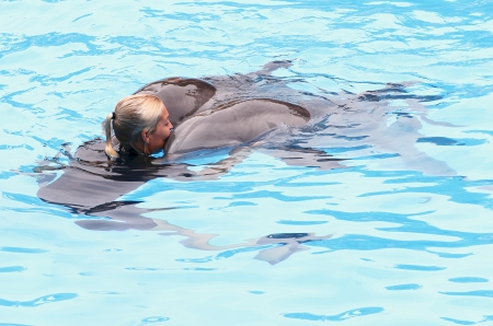 PUERTO DE LA CRUZ, TENERIFE - JULY 4: Dolphin show in the Loro Parque, which is now Tenerife's largest man made attraction with europe's biggest dolphin pool. July 4 2012 Puerto De La Cruz, Tenerife Stock Photo - 14756025
