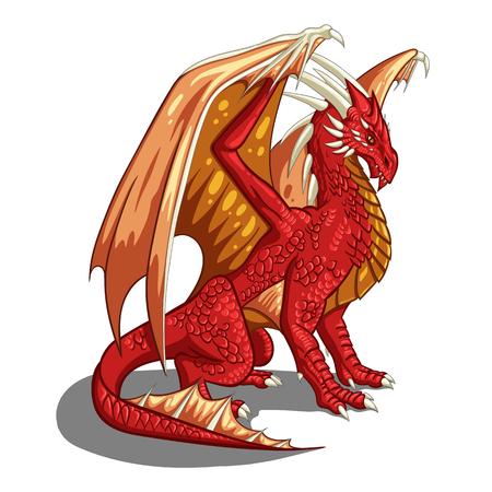 red dragon - vector illustration