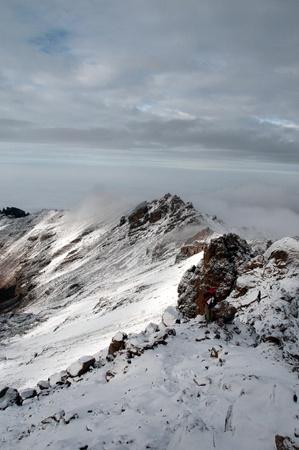 detritus: Mount Kenya