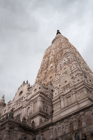 banian: Mahabodhy Temple, Bihar, India