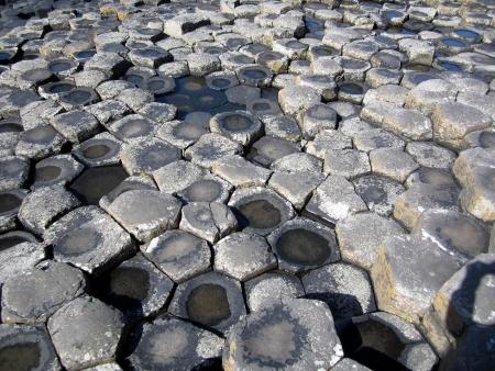 Giant s Causeway, County Antrim, Northern Ireland photo