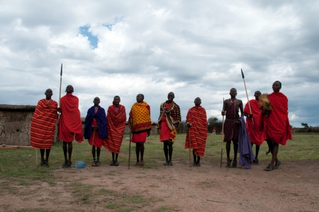 MASAI MARA,TANZANIA, AFRICA- FEB 23  Masai warriors dancing traditional jumps as cultural ceremony, review of daily life of local people  Masai Mara National Park Reserve, feb 23 , 2012, Tanzania