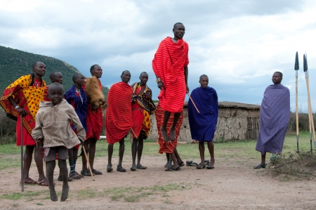 MASAI MARA,TANZANIA, AFRICA- FEB 23  Masai warriors dancing traditional jumps as cultural ceremony, review of daily life of local people  Masai Mara National Park Reserve, feb 23 , 2012, Tanzania