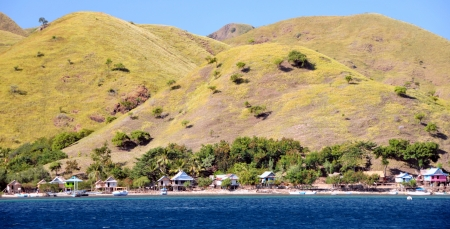 komodo island: Landscape of Komodo Island, Indonesia