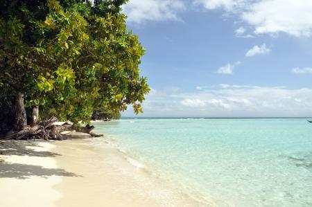 Nosy Be, Madagascar