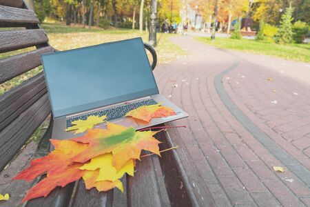In the autumn park on a bench with leaves lies a laptop. Autumn composition with a computer. Remote working concept. Horizontal image Stockfoto