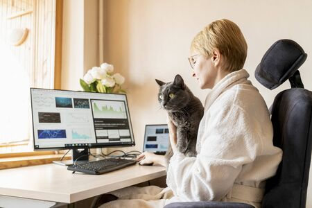 Cat sitting with his master at working place with IT equipment at home. He is disturbing woman while her work on computer.
