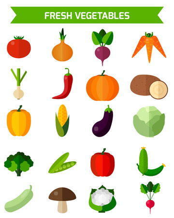 Flat vector illustration for your design. Colorful template for cooking, restaurant menu and vegetarian food