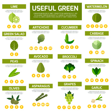 Vegetarian food infographic  background. Colorful template for cooking, restaurant menu and vegetarian food Ilustração