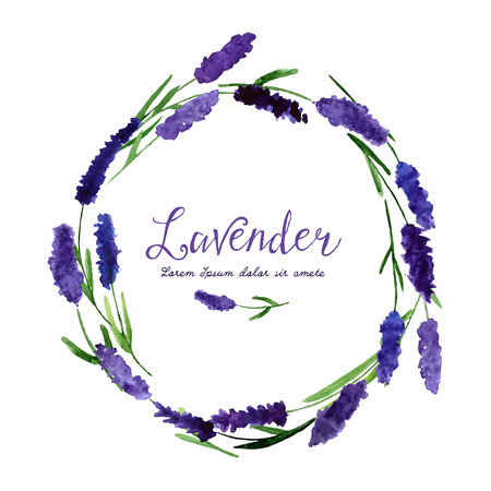illustration for greeting cards with watercolor lavender. Wedding invitation card.   Colorful theme for your design, prints and illustrations Çizim