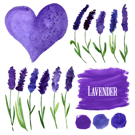 illustration for greeting cards with watercolor lavender. Colorful theme for your design, prints and illustrations Çizim