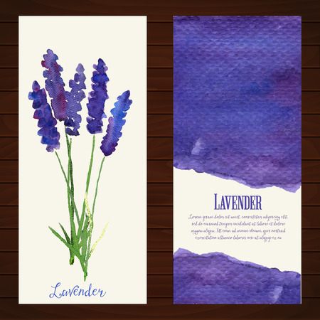 lavender: illustration for greeting cards with watercolor lavender.  Colorful theme for your design, prints and illustrations