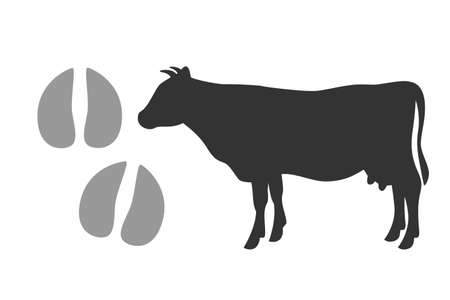Vector bull footprints and black silhouette of a cow isolated on a white background