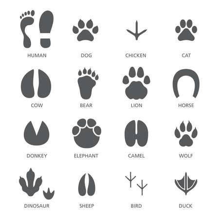 Vector set of footprint of different animals and human Vecteurs