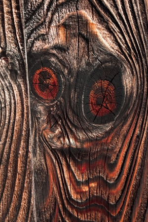 Vintage Wood Fence Plank with Knots Texture Stock Photo - 17472771