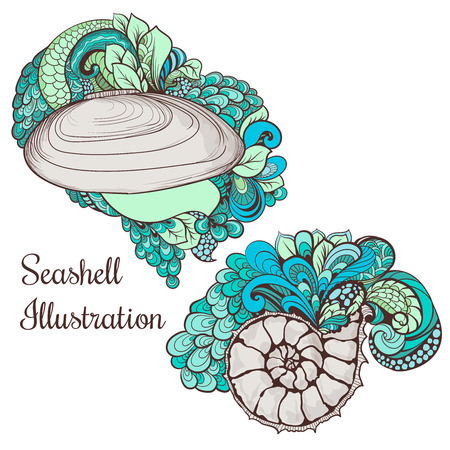 seashell: Two seashells isolated on white background with swirls and leaves decorations