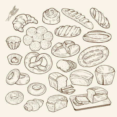 Food sketch set. Hand drawn bread and bakery background, freehand engraving style, artistic elements.