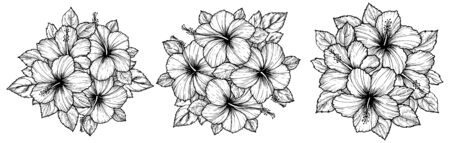 Hand drawn tropical hibiscus flower bouquet with leaves. Sketch florals on white background. Exotic blooms, engraving style for textile, surface design or banner. Great template for coloring book