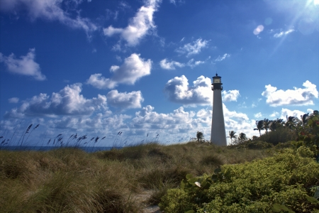 bill baggs: Lighthouse on the beach at Bill Baggs State Park.