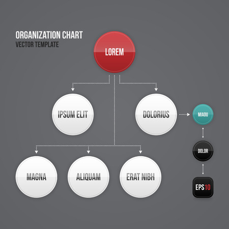 process chart: Organization chart template with round elements. EPS10. Illustration