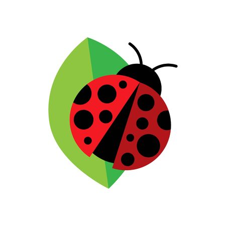 Ladybug or Ladybird Icon Vector Illustration, isolated on White