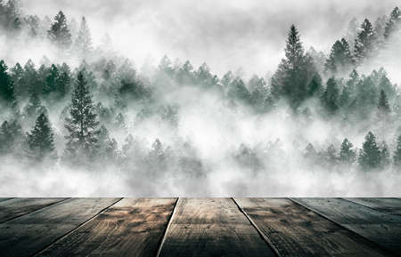 Foggy dark forest. Top view, fog, smog. Wild forest nature, forest landscape, landscape. Abstract fantasy forest. tidewater green. Dark forest, night view, seen from above.