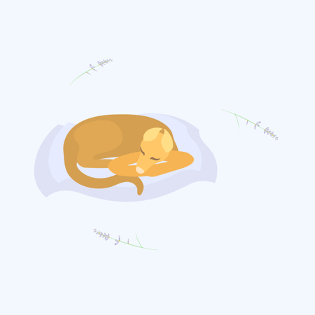 lavander with sleeping dog on the pillow Stock Vector - 121175601