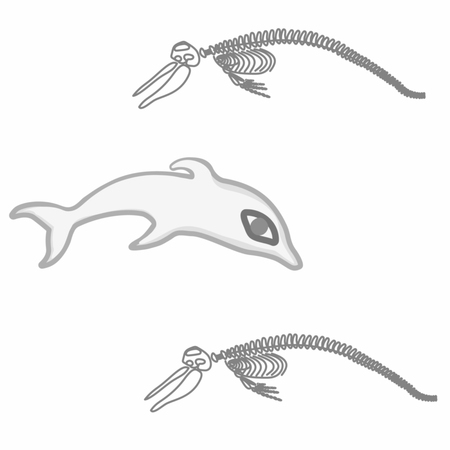 Dolphin and sceleton ecology hystory vector pattern