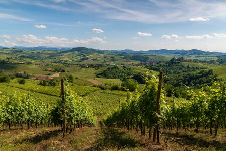 Oltrepo Pavese landscape hills with wineyards and country roads and Montalto Pavese castle in the background in a sunny day Banque d'images