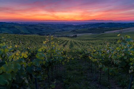 Amazing red and purple sunset over Oltrepo' Pavese hills with wineyards and country roads