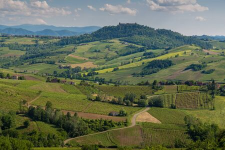 Oltrepo' Pavese landscape hills with wineyards and country roads and Montalto Pavese castle in the background in a sunny day Banque d'images
