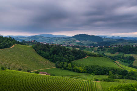 Oltrepo Pavese landscape with wineyards and Montalto castle in a cloudy day