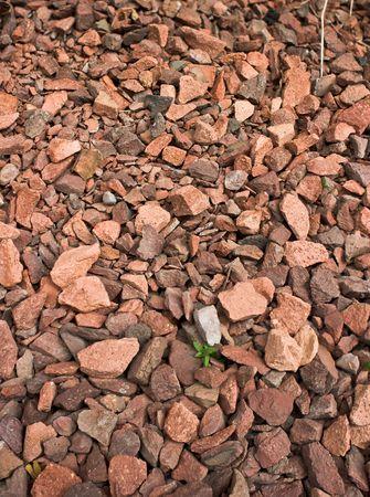 Crushed red rock footpath between houses