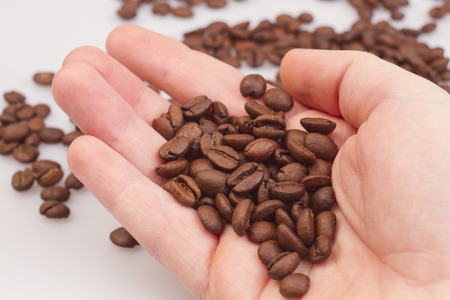 Coffee beans on the hands
