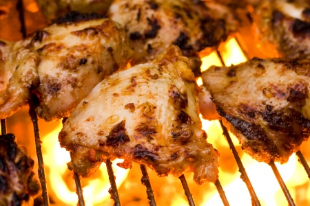 barbecue Stock Photo - 14717116